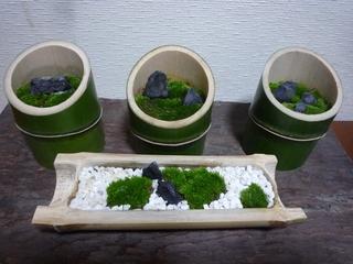 2012.11 竹庭.jpg